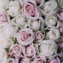 Death_to_stock_photography_bonus_floral_4